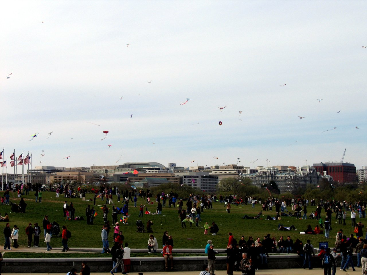 Kite Festival in Washington D.C.