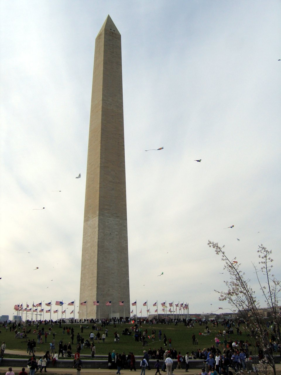 Kite Festival Surrounds the Washington Memorial
