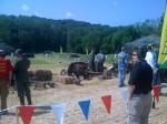 Breech loading artillery pieces