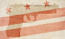 DC Gun Bill of Rights