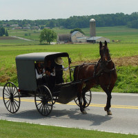Amish Farmers in New York Denied Gun Rights by SAFE Act