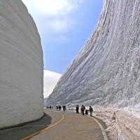 The Snowpacalypse is Upon Us