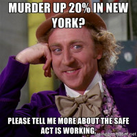 How's that SAFE Act Working Out for Ya?