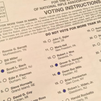 Board Elections and the Norquist Recall